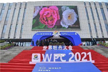 2021世界牡丹大会开幕